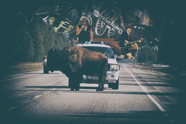 HELLS BELLS ideal para espantar bisontes de las carreteras de Montana.
