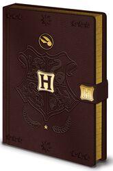 Quidditch - cuaderno Premium
