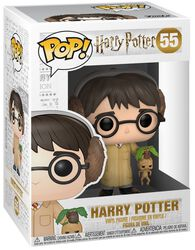 Figura Vinilo Harry Potter (Herbology) 55