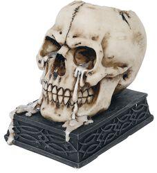 Tears of Time - porta velas te - Skull
