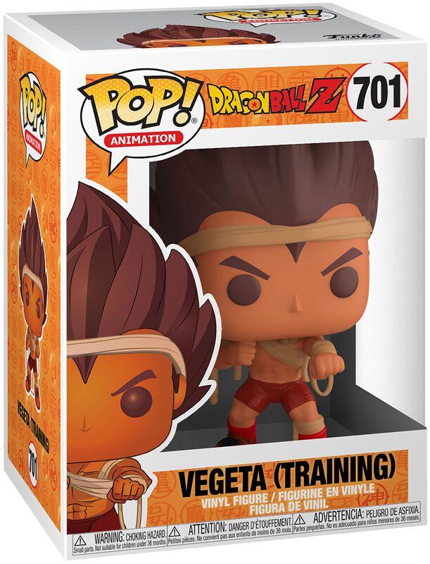 Figura Vinilo Z - Vegeta (Training) 701