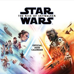 Episode 9 - The Rise of Skywalker Calendario pared 2020