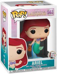 Figura Vinilo Ariel 563
