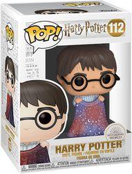 Figura Vinilo Harry Potter 112