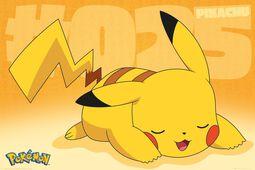 Pikachu Asleep
