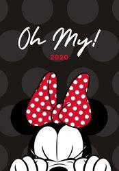 Minnie Mouse Diarios A5 2020
