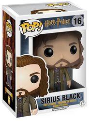 Figura Vinilo Sirius Black 16