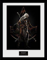 Origins - Assassin