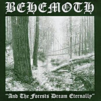 And the forests dream eternally