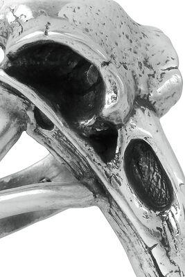 Calavera de Cuervo