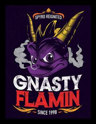 Gnasty Flamin'