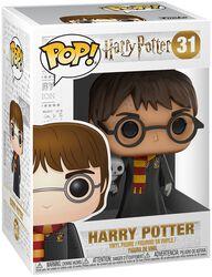 Figura Vinilo Harry con Hedwig - 31