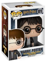 Figura Vinilo Harry Potter 01