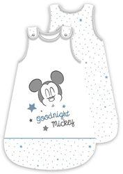 Good Night Mickey