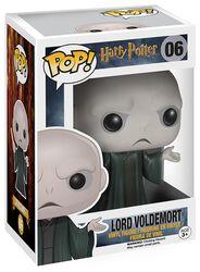 Figura Vinilo Lord Voldemort 06