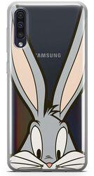 Bugs Close Up - Samsung
