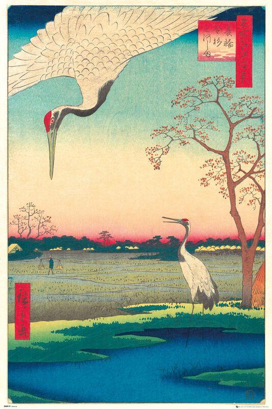 Kanasugi at Mikawashima
