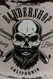 Calaveras Barber Skull