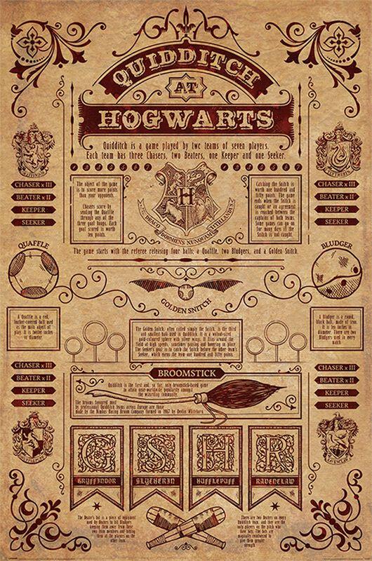 Quidditch at Hogwarts