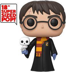 Figura vinilo Harry Potter (Life Size) 01