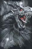 Dragon's Cry